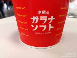 ガラナソフトクリーム(2)