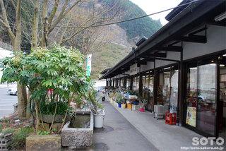 木の花ガルテン(2)