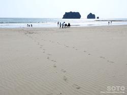 親子岩ふれ愛ビーチキャンプ場(2)