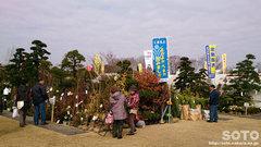 JA植木まつり2015