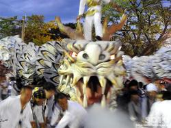 白龍祭(14)