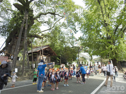菊池秋祭り2016(4)