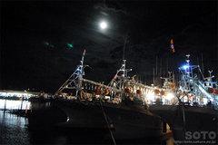 羅臼漁港(夜景2)