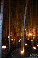 韮山竹灯籠まつり(3)