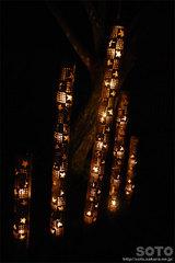 韮山竹灯籠まつり(8)