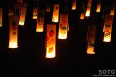 韮山竹灯籠まつり(10)