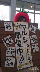 道の駅おおむた出店(看板)