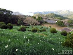 遠見山公園(3)