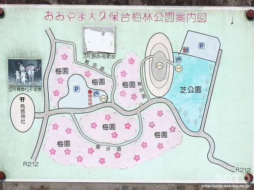 おおくぼ台梅園(MAP)