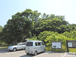 牧谷カキツバタ(4)