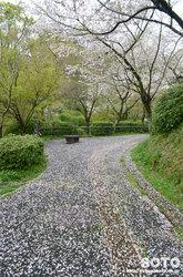 菊池公園遊歩道