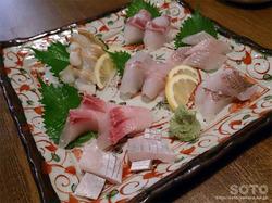 魚処 竜(2)