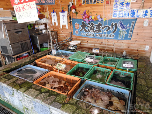 漁師の直売所(2)