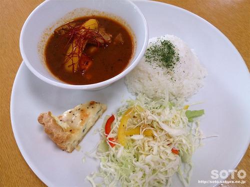 知床自然センター(知床鶏スープカレー)