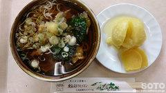 愛山渓温泉(山菜そば)