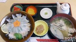ひらはた(カワハギ定食)