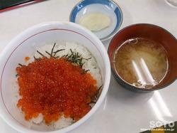 ウトロ漁協婦人部食堂(いくら丼)