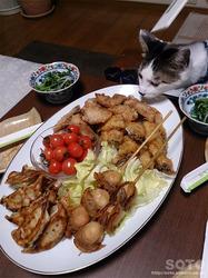 晩餐(1)