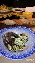 神楽寿司(亀の手1)