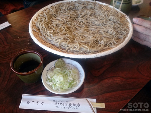 長畑庵(2)