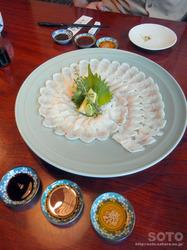 鰻樹(うな刺)