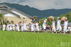 阿蘇神社おんだ祭(35)