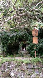 阿蘇神社おんだ祭(38)