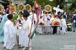阿蘇神社おんだ祭(51)