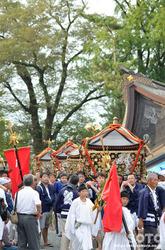 阿蘇神社おんだ祭(52)