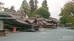 阿蘇神社おんだ祭(56)