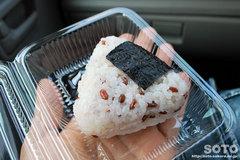 古代米(赤米)入りおにぎり