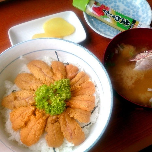 漁師の店(ウニ丼)