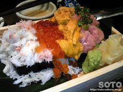 魚真(5)