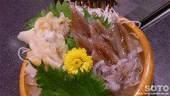 道の駅【氷見】(ホタルイカとつぶ貝の刺身)