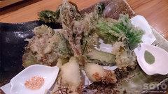 肴や(山菜の天婦羅)