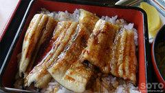 黒ハモ丼(ミニ)