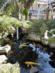 崎津集落(ルルドを模した池)