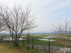 年賀塚跡(2)