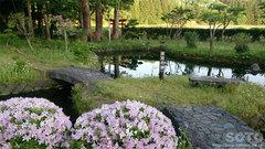 十和田 沼袋の水(大沼の跡)