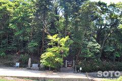 安徳天皇西市御陵墓(1)