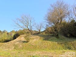 神籠石(1)