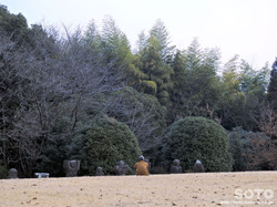 岩戸山古墳(4)