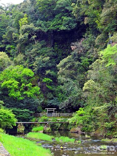 吾平山上陵(1)