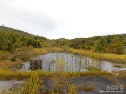 西山火口散策路(資料館からの眺め)