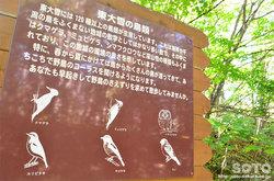 糠平川橋梁(野鳥の看板)