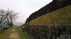 佐敷城跡(3)