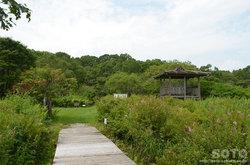 ポー川史跡自然公園(散策路/展望台)