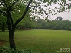 高岡古城公園(4)