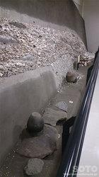 モヨロ貝塚館(3)