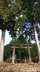 隈部氏館跡(鳥居)